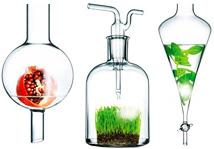 Ингредиенты для натуральной косметики киев