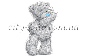 Картинка на водорастворимой бумаге, Медведи 03022: медведи - 1   city-soap.com.ua