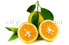 Эфирные масла Масло апельсиновых косточек | city-soap.com.ua