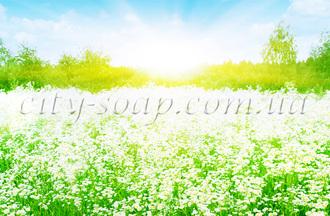 Отдушка Flower Paradise
