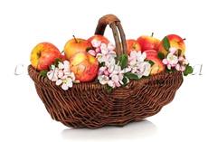 Отдушка Яблоневый цвет