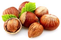 Витамины и антиоксиданты Масло лесного ореха (рафинированное)   city-soap.com.ua