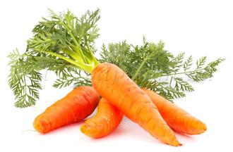 СО2 экстракт Моркови