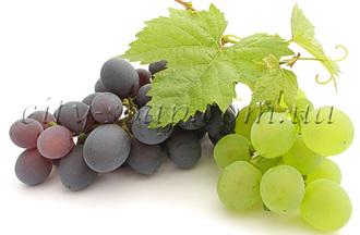 Отдушка Виноград